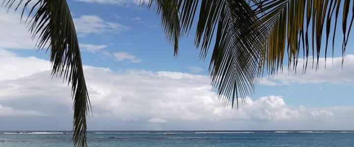 Легенда Ямайки — Боб Марли